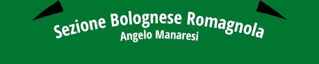 Sezione Bolognese Romagnola - Angelo Manaresi